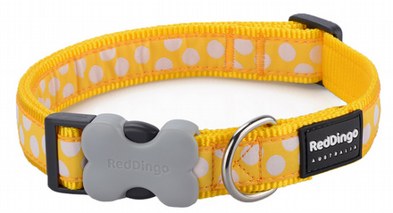 Red Dingo Dog Collar Yellow Spot